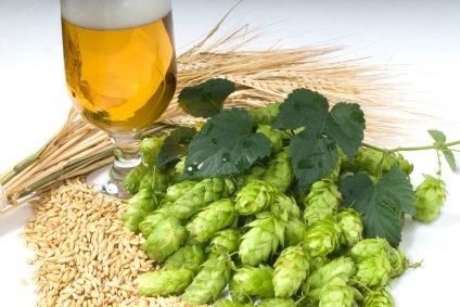 luppolo e birra
