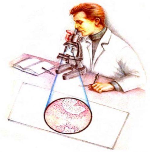 analisi prostata