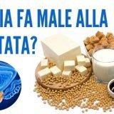 La Soia fa Male alla Prostata?